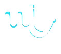 Logo Welligo